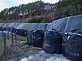 Fukushima 2013-11 (12116280175).jpg