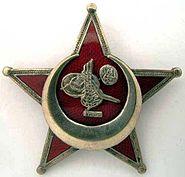 Gallipoli-star-BBen Co.