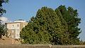 Garden Way - Wall - trees - streamlet - 17 Shahrivar st - Nishapur 43.JPG