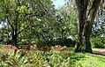 Garden view - Bok Tower Gardens - DSC02248.jpg