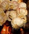 Garlic (6556088143).jpg