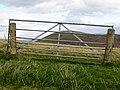 Gate, Hamildean Hill - geograph.org.uk - 590775.jpg