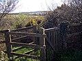 Gate - geograph.org.uk - 1248468.jpg