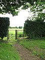 Gate on footpath - geograph.org.uk - 1362319.jpg