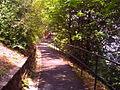 Gellért-hegyi sétány.JPG