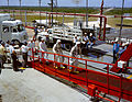 Gemini 4 training ramp walk.jpg