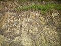 Geology of Templestowe.jpg