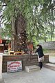 Ghatothkach Shrine - Manali 2014-05-11 2715.JPG