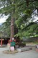 Ghatothkach Shrine - Manali 2014-05-11 2721.JPG
