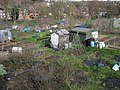 Gledhow Valley Allotments 18 March 2019 1.jpg