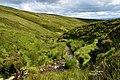 Glenbuith streamway - geograph.org.uk - 1407298.jpg