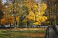 Gliwice - Park Chopina - panoramio (6).jpg