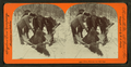Glory enough for one day, from Robert N. Dennis collection of stereoscopic views 3.png