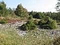 Goblin Combe - geograph.org.uk - 980847.jpg