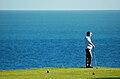 Golf (244832708).jpg