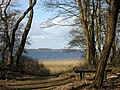 Gooimeer near Oud Valkeveen. Province of North Holland, Netherlands - panoramio.jpg