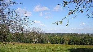 Milton Hill Historic District - Governor Thomas Hutchinson's Field