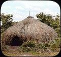 Grass hut (3948760716).jpg