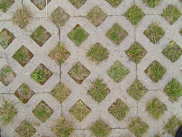 Grass paver paving.jpg
