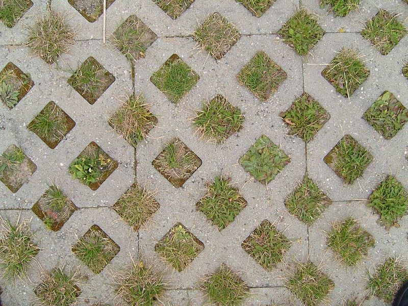 File:Grass paver paving.jpg