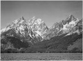 "Grassy valley, tree covered mountain side and snow covered peaks, Grand ""Teton National Park"", Wyoming., 1933 - 1942 - NARA - 519914.tif"
