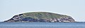 Green Island viewed from Ragged Cove - Witless Bay, Newfoundland 2019-08-12.jpg