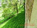 Green slopes downhill from Edinburgh Castle - panoramio.jpg
