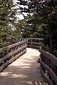 Greenwich National Park Boardwalk (34092643).jpg