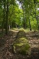 Grobowiec z okresu neolitu, Wietrzychowice - panoramio.jpg