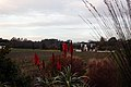 Groot Constantia - panoramio (10).jpg