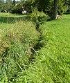 Grundwasser Oderwitz 2010-08-04 00.jpg