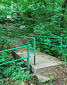 GuentherZ 2013-05-21 0528 Wien19 Gspoettgraben Steg zur Hoehle über dem Gspoettgraben.JPG
