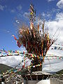 Guishan Temple main temple walkway prayer flag bush.JPG