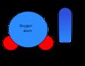 H2O molecule scheme of dipole.png