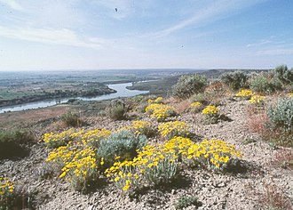 Hagerman Fossil Beds National Monument - View over Snake River in the National Monument