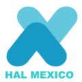 HAL Aluminum México.png