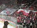 HC Mountfield-fans.jpg
