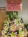 HKCL CWB 香港中央圖書館 Hong Kong Central Library 展覽廳 Exhibition Gallery 國際攝影沙龍展 PSEA flowers sign Oct 2016 SSG 02.jpg