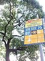 HK 灣仔 Wan Chai 皇后大道東 Queen's Road East CityBus 37B 37X 75 97 N90 stop signs October 2017 IX1 格木 Erythrophleum fordii.jpg