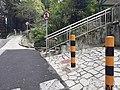 HK ML 香港半山區 Mid-levels 舊山頂道 Old Peak Road near Dynasty Court April 2020 SS2 06.jpg