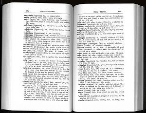 Hamis szótárakat gyártott egy fuvarozó cég alkalmazottja a kamionsofőröknek