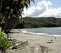 Hampstead Beach from West (Dominica).jpg