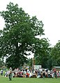 Hardingham Fete 29-6-05 at High Common - geograph.org.uk - 23067.jpg