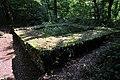 Hardwald, Teil der spätrömischen Rheinbefestigung in Weiach 2011-09-15 12-25-42.JPG