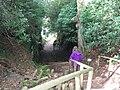 Hawkstone Park - geograph.org.uk - 725827.jpg