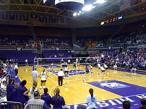 Hec Edmundson Pavilion - UW volleyball vs. Cal on October 3, 2008