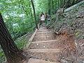 High Falls State Park southern trail b.JPG