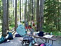Hike-Biker Campsite serves as basecamp in Apgar Village. July 21st, 2007 - panoramio.jpg
