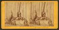 Holiday in sugar orchard, from Robert N. Dennis collection of stereoscopic views.png