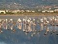 Holidays Greece - panoramio (401).jpg
